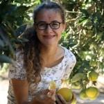 Signe med appelsiner